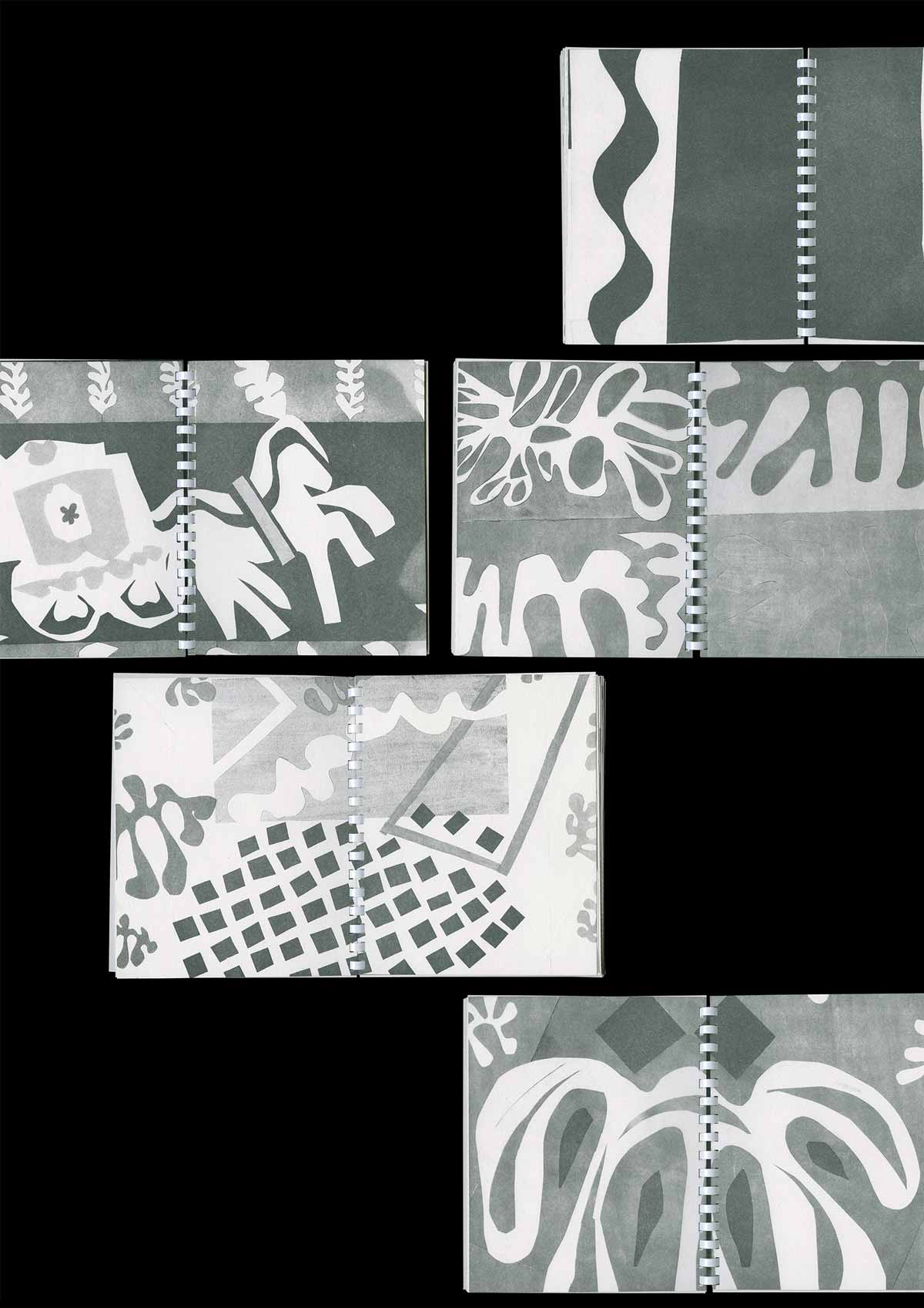 Hand pressed turps released pages, Henri Matisse: The Cut-Outs